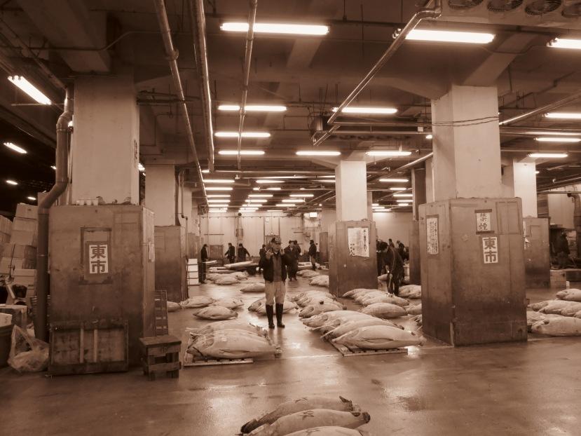 Tuna auction at Tsukiji was a bit jarring.